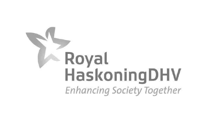 Royal Haskoning logo - Dev Services