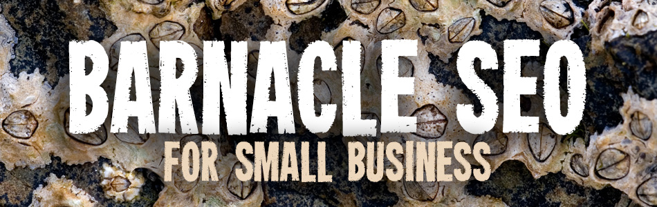 "The Use of ""Barnacle SEO"" for Small Business"